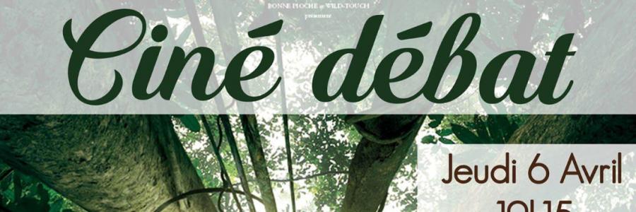 Ciné débat : Il était une forêt