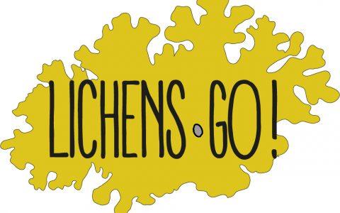 Lichens Go Cézeaux – 2ème séance d'initiation – 12 mars 2020